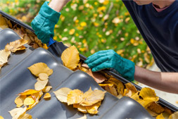 Cleaning leavings from gutter